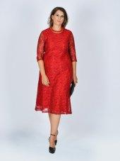 Nidya Moda Büyük Beden Sıfır Yaka Dantel Abiye Elbise 4036k