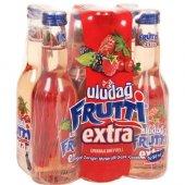 Uludağ Frutti Extra Orman Meyveli 6x250ml