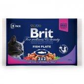 Brit Care Balıklı Lezzet Seçenekleri 4 X 100 Gr Multipack
