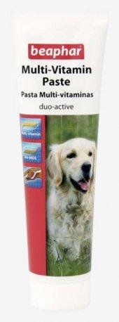 Beaphar Duo Active Multivitamin Paste Köpek Vitamin Macunu 100 Gr