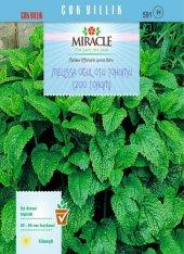 Miracle Melissa Oğul Otu Tohumu (200 Tohum) 10 Adet