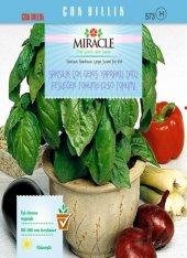 Saksılık Çok Geniş Yapraklı Tatlı Fesleğen Tohumu(250 Tohum) 10 A