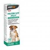 Vetıq Vitamin Mineral İçerikli Enerji Verici Köpek Macunu 100gr