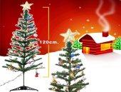 Yılbaşı Ağacı 120cm Pirinç Işık Ve 24 Adet Ağaç Süsleri