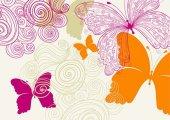 Cushion Design 4lü Butterfly Amerikan Servis
