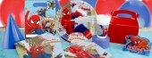 Spiderman, Örümcek Adam 8 Kişilik 11 Parça Doğum Günü Set Mini