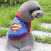 Lion Superman Köpek Elbisesi Small Mq Qz105