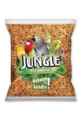 Jungle Vitaminli Muhabbet Kuşu Yemi 500 Gr
