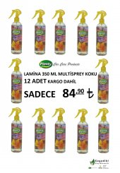 Plenty 12 Adet Lamina 350 Ml Multisprey Koku