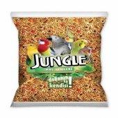 Jungle Poşet Muhabbet Kuşu Yemi 500 Gr