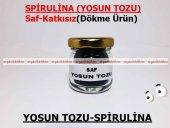 Yosun Tozu Spirulina (Mavi Yeşil Alg) 100gr Doğal Taze