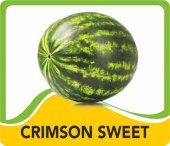 Karpuz Carimson Sweet (Yerli)