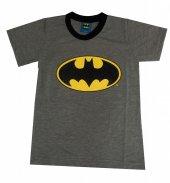 Batman Tişört Batman Logo Gri