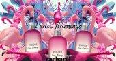 Cacharel Amor Amor Leau Flamingo Eau De Toilette Spray 100 Ml