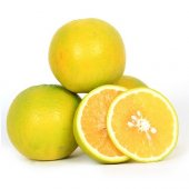 Tatlı Limon (8 Kg Tatlı Limon)