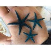 50 Adet Küçük Deniz Yıldızı Farklı Renk Seçenekleriyle