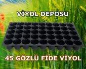 45 Gözlü Fide Viyol (10 Adet) Tohum Çimlendirme Viyolü