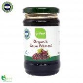 Grünn Organik Üzüm Pekmezi 380 Gr