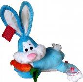 Peluş Tavşan Yatan Havuçlu Sevimli Tavşan