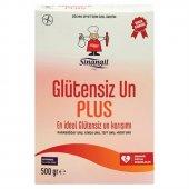Sinangil Glutensiz Un Plus 500 Gr