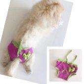 Eflatun Yeşil Kemiques Secret Köpek İç Çamaşırı Regl Külot D