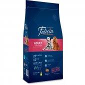 Felicia High Premium Kuzulu Yetişkin Köpek Maması 15 Kg