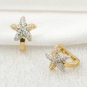 Deniz Yıldızı 14 Ayar Altın Taşlı Küpe