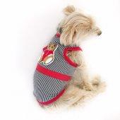 Strıpe Red Teddy Atlet By Kemique Köpek Kıyafeti Köpek Elbisesi