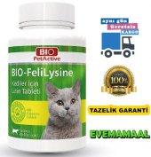 Yetişkin Kediler İçin Sağlıklı Gelişimi Destekleyen Lizin Tablet