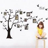 Aile Soy Ağacı Fotoğraf Albümlü Duvar Resmi Xxl Dekor Çıkartması