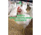 Kanatlı Kümes Hayvanlarının Beslenmesi Kitabı