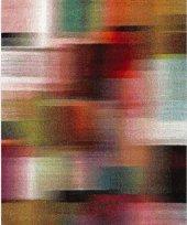 Merinos Halı Opal Pıcaso 21872 120x170 110