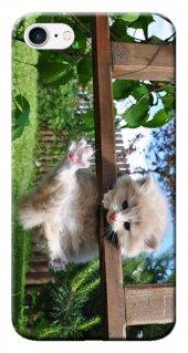 Iphone 6 6s Kılıf Silikon Baskılı Kedi Yavrusu Stk 192