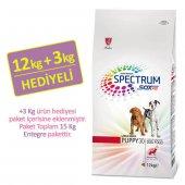 Spectrum Ultra Premium Puppy Large Breed Büyük Irk Yavru Köpek Ma