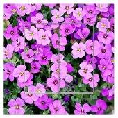Dekoratif Baskılı Elektrik Düğmesi Priz Kapı Zili Mor Çiçekler