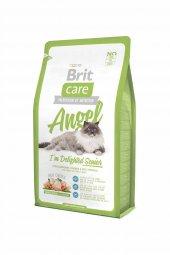 Brit Care Cat Angel Delighted Senior Yaşli Kedi Mamasi 2 Kg