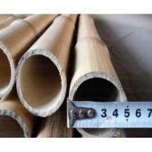 Bambu 3 Adet Dekoratif Bambu Bitki Destek Çubuğuğ 200 Cm Uzunluk 4 5cm Çap
