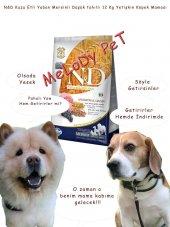 Nd Kuzu Etli Yaban Mersinli Düşük Tahıllı Yetişkin Köpek Maması Açık 3 Kg