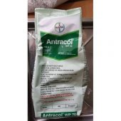 Antracol Wp 70 800 Gr