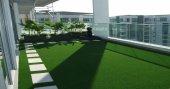 Yeşil Suni Çim Halı 7 Mm 1x24 24m2 Çim Halı Bahçe Çim Rengi Halı Çim Halı En Ucuz Çim Halılar
