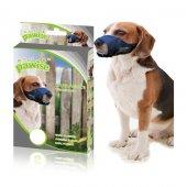 Pawise Ayarlanabilir Köpek Ağızlığı L (Pws3014 L)