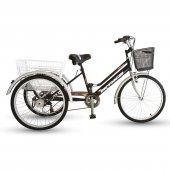 Arnica Üç Tekerlekli Kargo Bisiklet