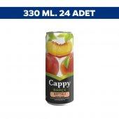 Cappy Kutu Şeftali Meyvesuyu 330 Ml X 24