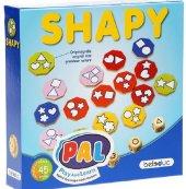 Pal Shapy Eğitici Akıl Ve Zeka Oyunları