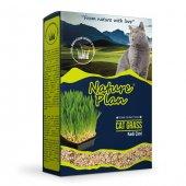 Nature Plan 501 3001 Kedi Çimi