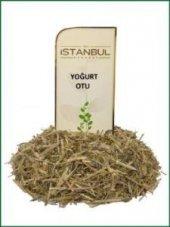 Istanbul Baharat Yoğurt Otu 50 Gr