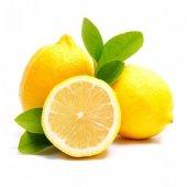 Limon Fidanı Yediveren Gerçek Limon