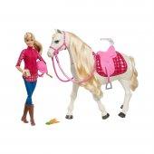 Barbie Ve Muhteşem Atı Frv36