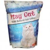 Pisyy Cat Silika Kedi Kumu