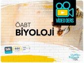 öabt Biyoloji Öğretmenliği 152 Saat Video Dersler Tekuzem